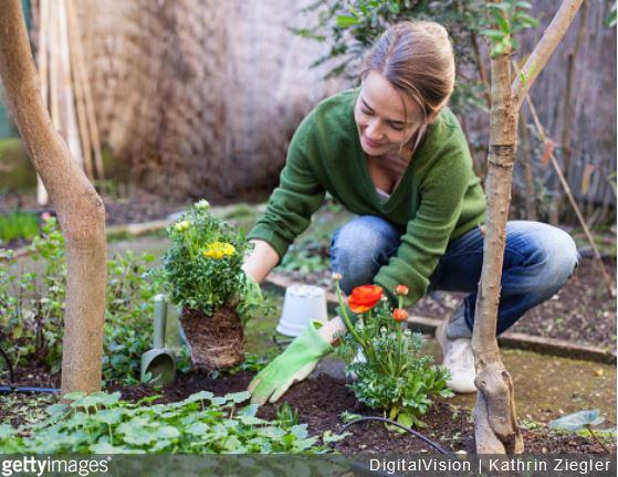 Garden thérapie : les bienfaits du jardinage sur votre santé
