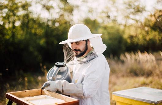 apiculteur-homme-jeune-metier-materiel-combinaison