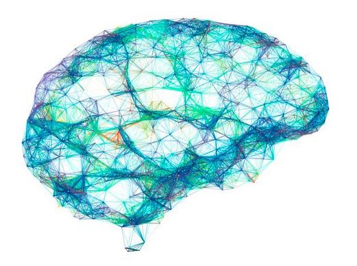 DHA-cerveau-cognition-acides-gras